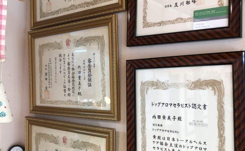 京都のトリミング・ペットホテル・ペット一時預かりのDOGアイドル