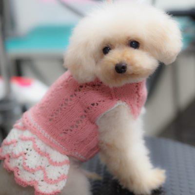 犬服のトリミング